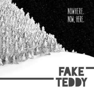 fake-teddy